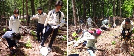 甲府:今年も市民の方々と植樹を行いました
