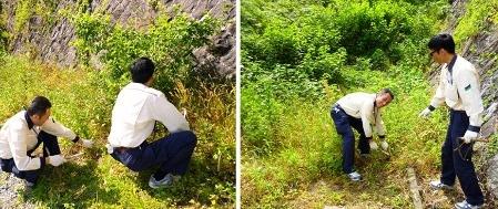 松江:忌部浄水場周辺の除草作業に参加しました